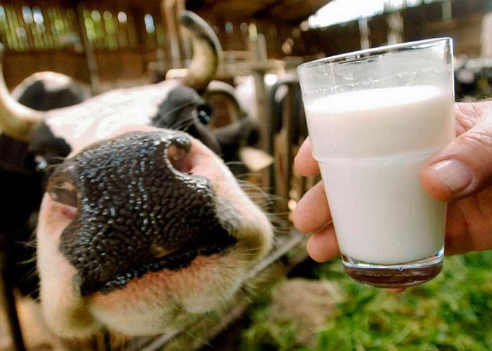 Молоко для космонавтов